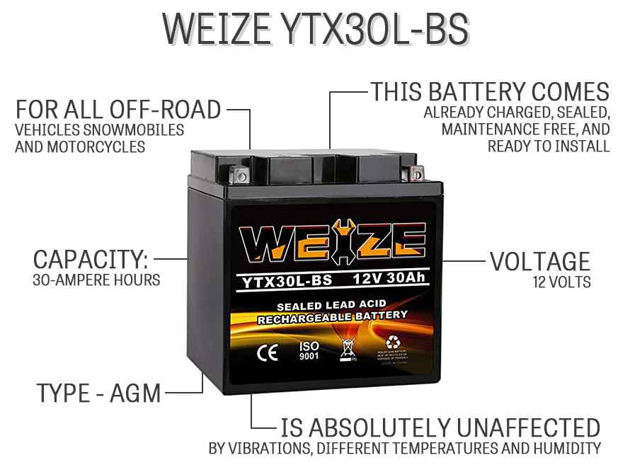 Weize YTX30L-BS